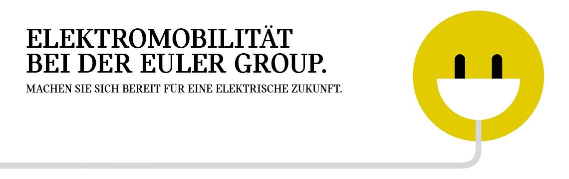 header_euler_electric.jpg